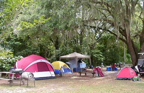 Perry Koa Florida Campgrounds Florida Rv Parks