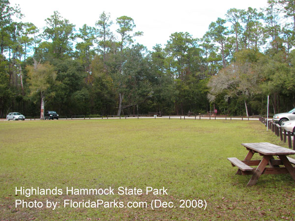 Highlands Hammock State Park Sebring Florida Usa