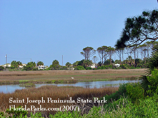Saint Joseph Peninsula State Park Photo