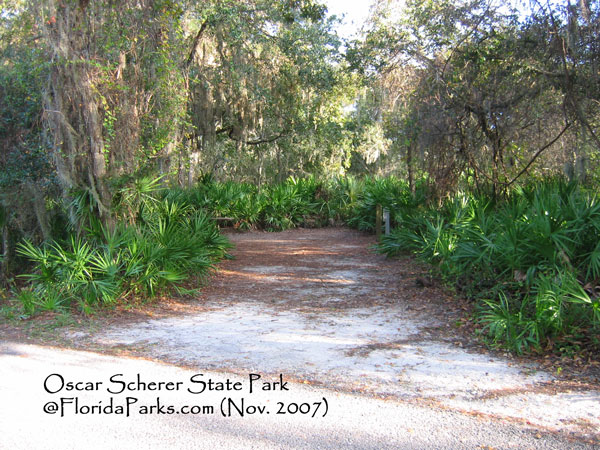 Nature Destinations Visit Venice Fl furthermore Lake Louisa State Park furthermore Oscar Scherer State Park additionally Legacy Trail Ve ian Waterway together with Egmont Key Nwr. on oscar scherer state park fishing