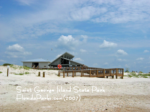 Saint George Island State Park Beach Area Photo