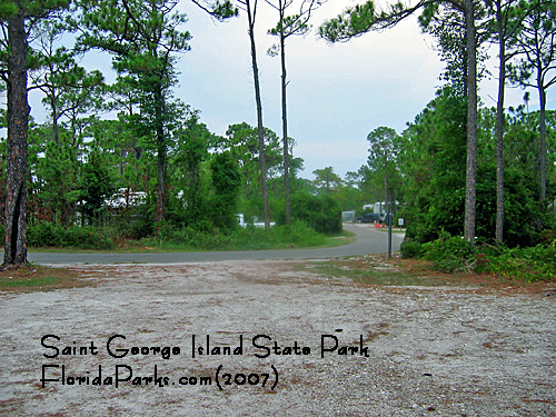 Saint George Island State Park Campground Photo