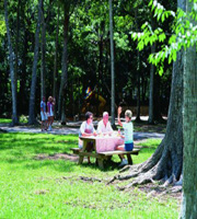 Orange Isle Campground Florida Campgrounds Florida Rv Parks