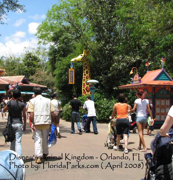 Disney's Animal Kingdom Photo