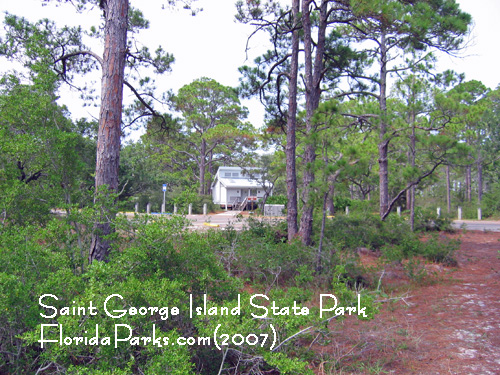 Saint George Island State Park Photos