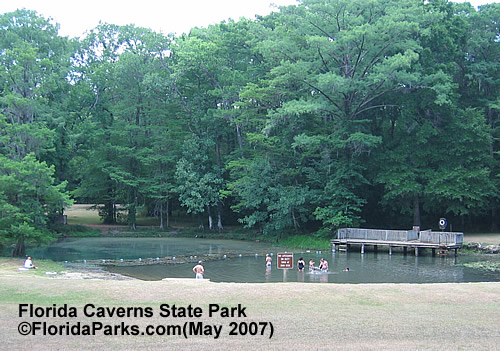 Florida State Parks Caverns Swimming Area Photo