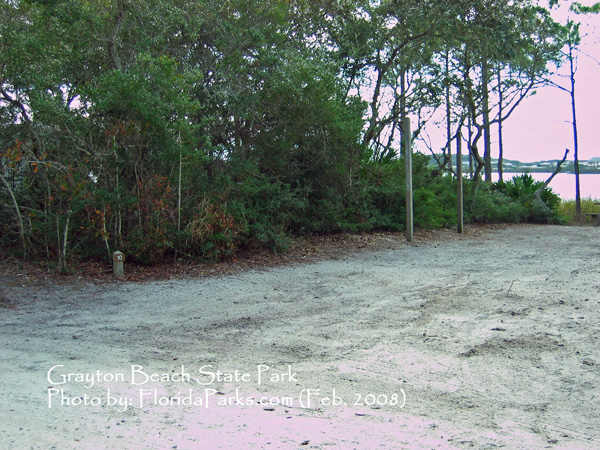 Grayton Beach State Park Campground Photo