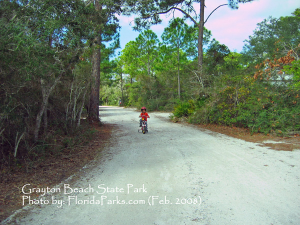 Key West Hotels >> Grayton Beach State Park