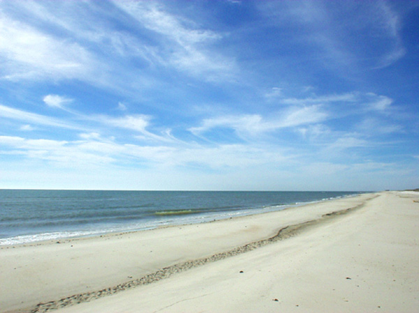 Campgrounds St George Island Fl