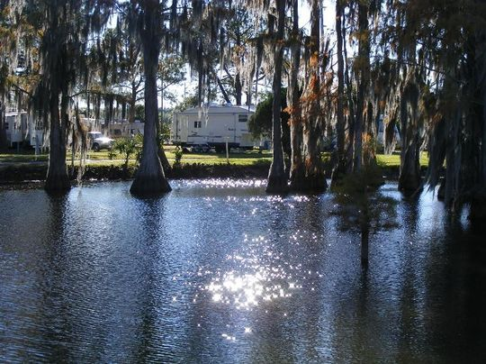 winter garden rv resort florida - Winter Garden Rv Resort