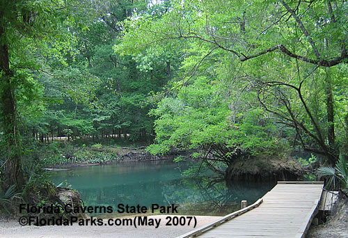 Florida State Parks Caverns Spring  Area Photo